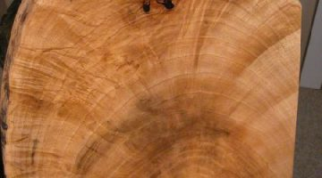 Maple Slab Custom Coffee Tables handmade in Montana, USA 2