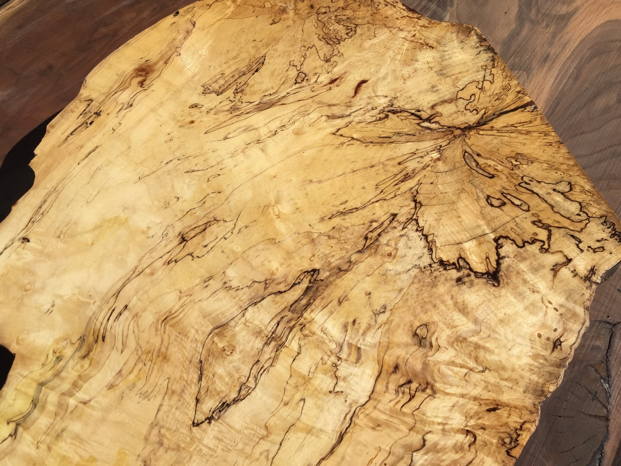 spalted maple live edge slab top