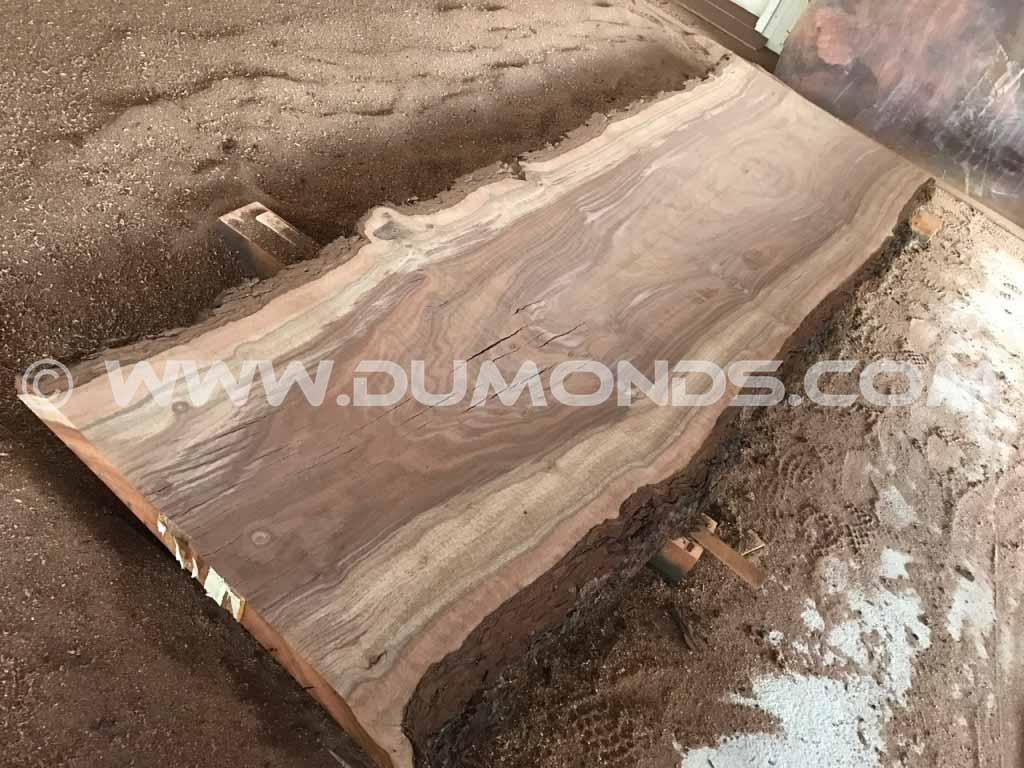 11 Foot Walnut Natural Edge Countertop