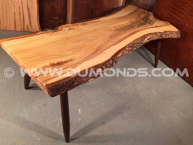 Siberian Elm Natural Edge Bench