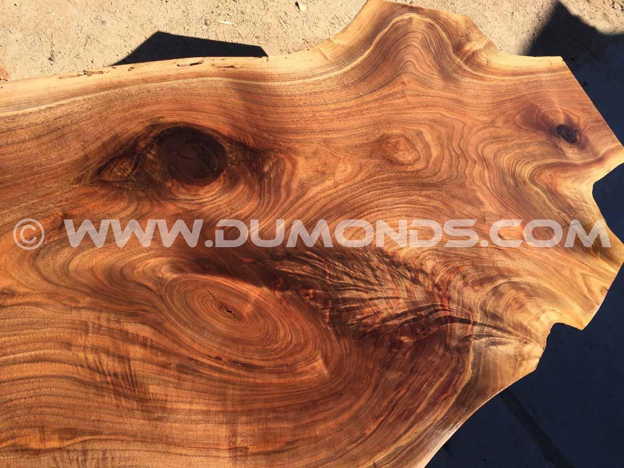 live edge walnut crotch