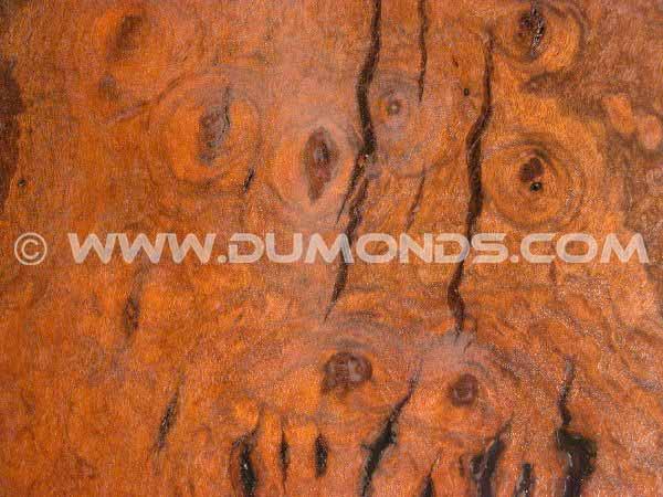 Irregular Walnut Burl Slab Custom Coffee Table 2