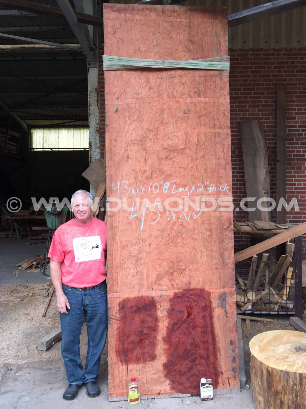 43″ x 10.5′ x 2″ Thick Bubinga Slab Table Top