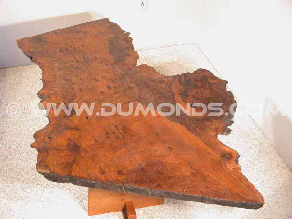Organic Irregular Shaped Walnut Burl Slab Custom Coffee Table