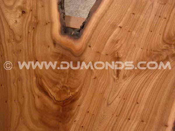 Recycled Rustic Siberian Elm Slab Custom Coffee Table 2