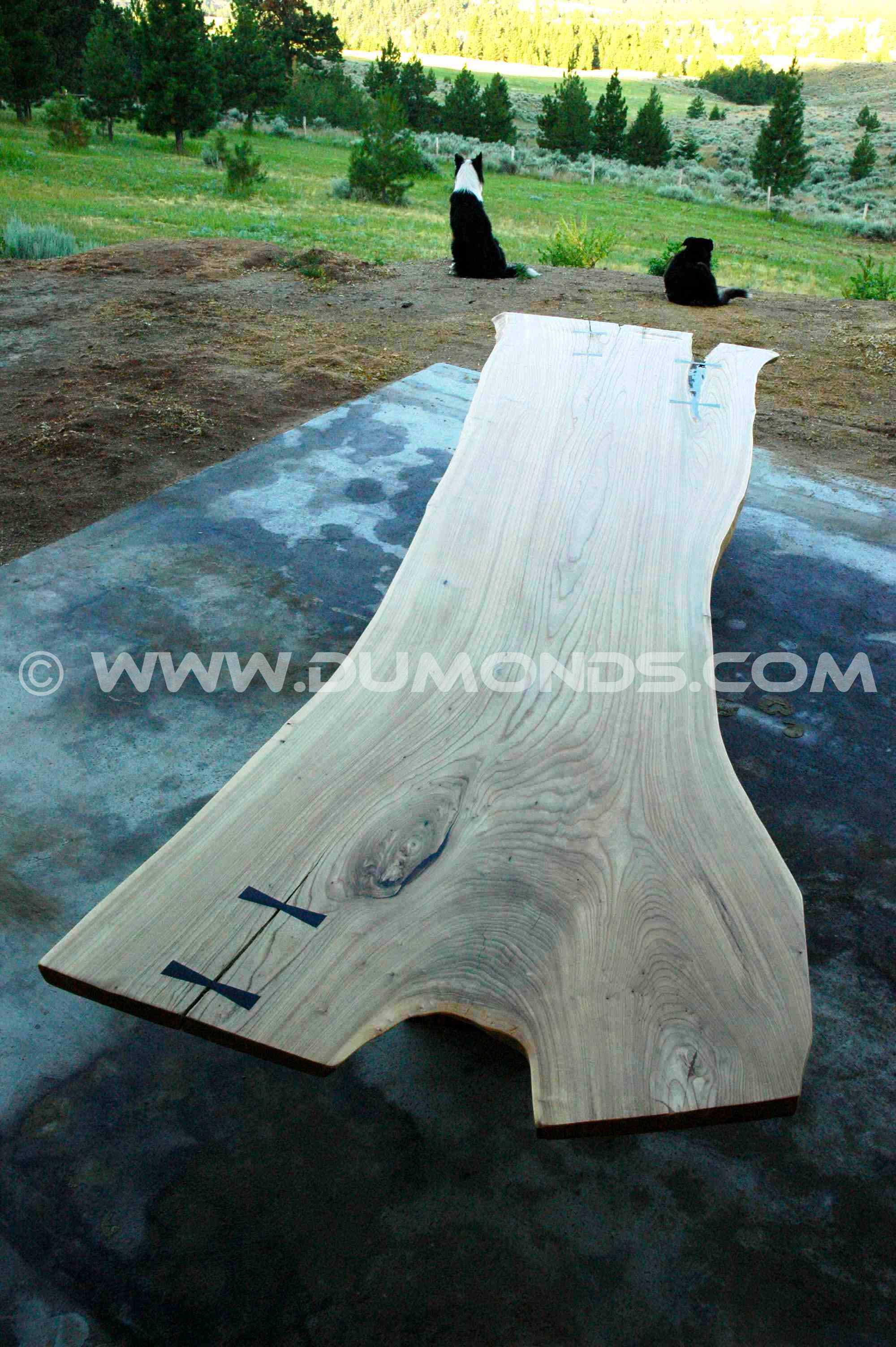 Siberian Elm Slab Custom Dining Table